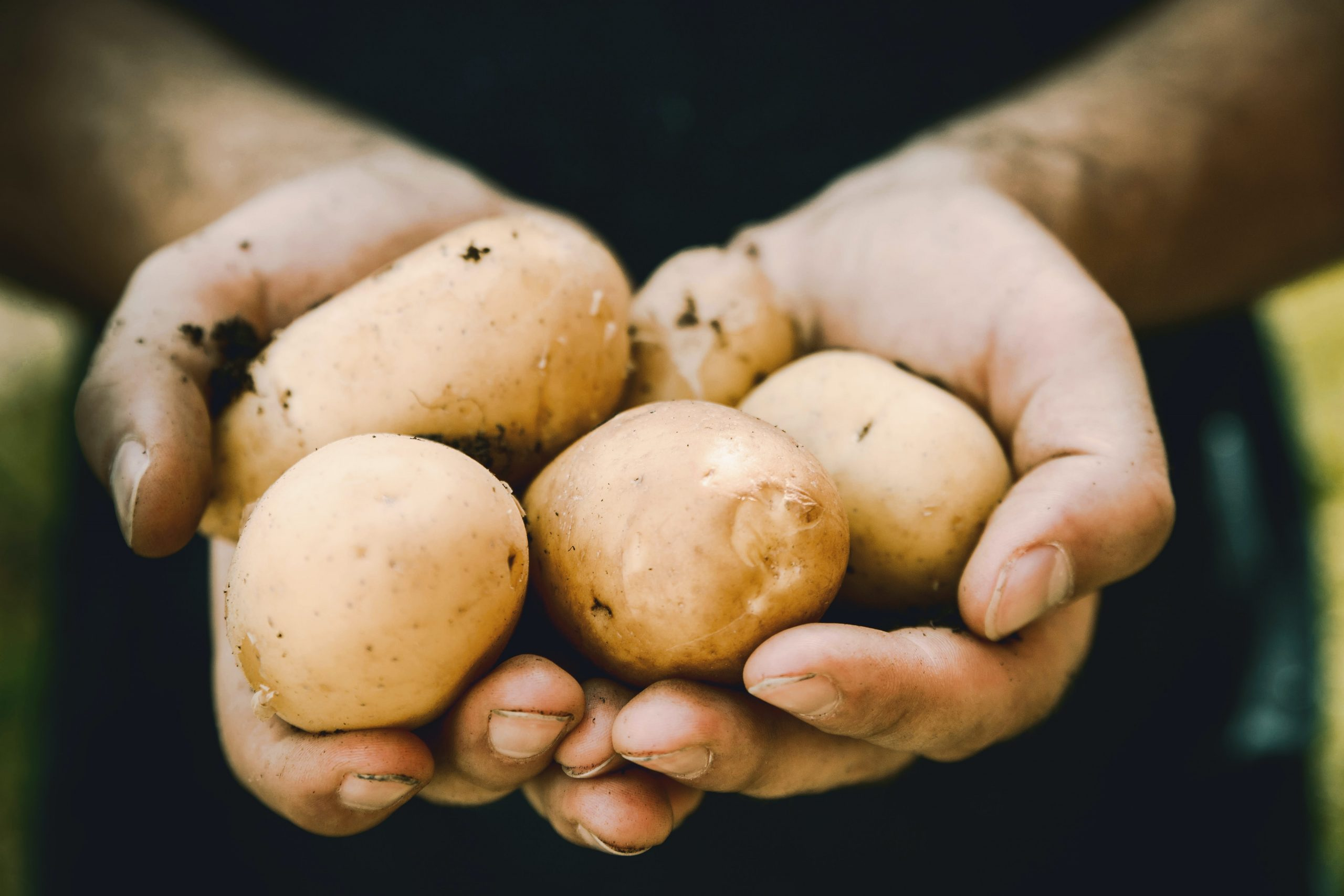 5x in de week aardappelen op het menu.